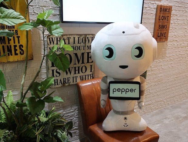 Robot Mascot Toys