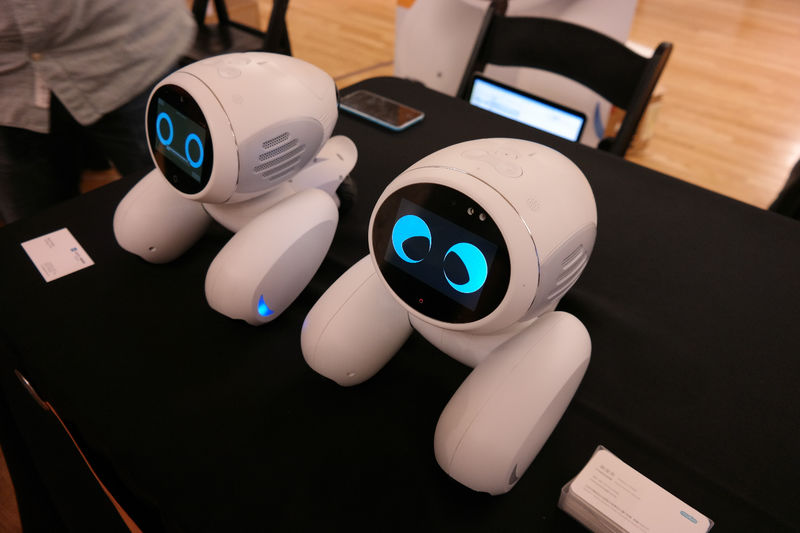 Robotic Pet Assistants