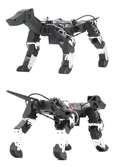 Canine Robots
