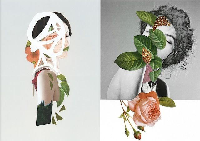 Captivating Botanical Collages