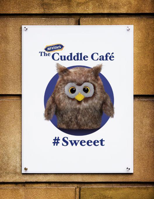 Cozy Cuddling Cafes