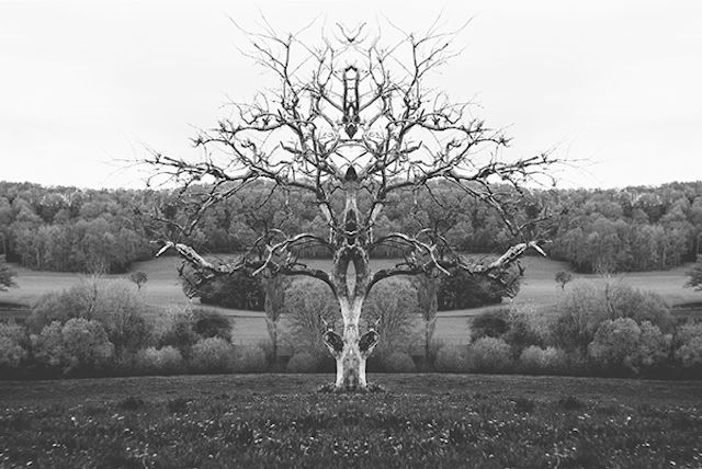 Mirrored Monochromatic Landscapes