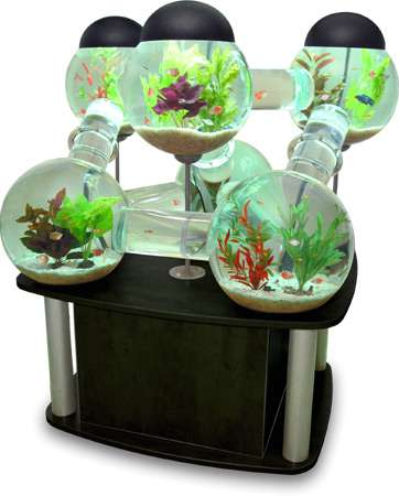 multi room fish tanks the silverfish aquarium from octopus studios. Black Bedroom Furniture Sets. Home Design Ideas