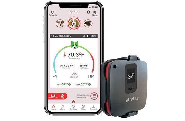 Telecom-Connected Pet Monitors