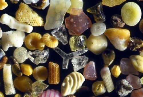 Microscopic Sand Grain Photography