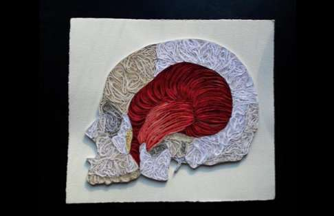 Anatomical Papercrafts