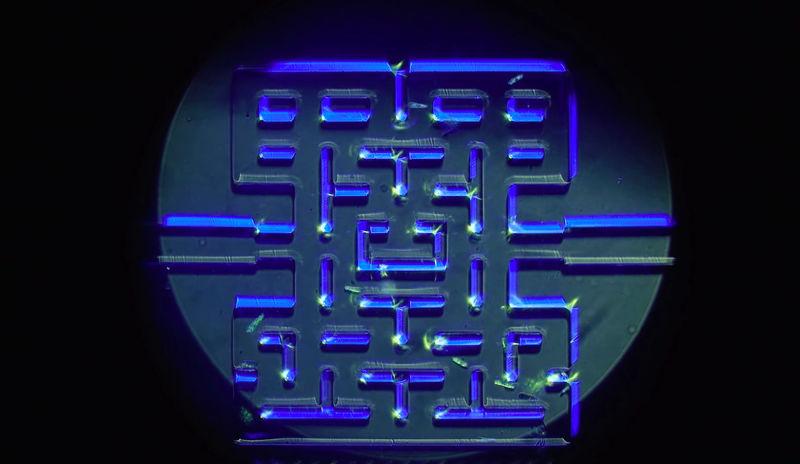 Microscopic Arcade Games