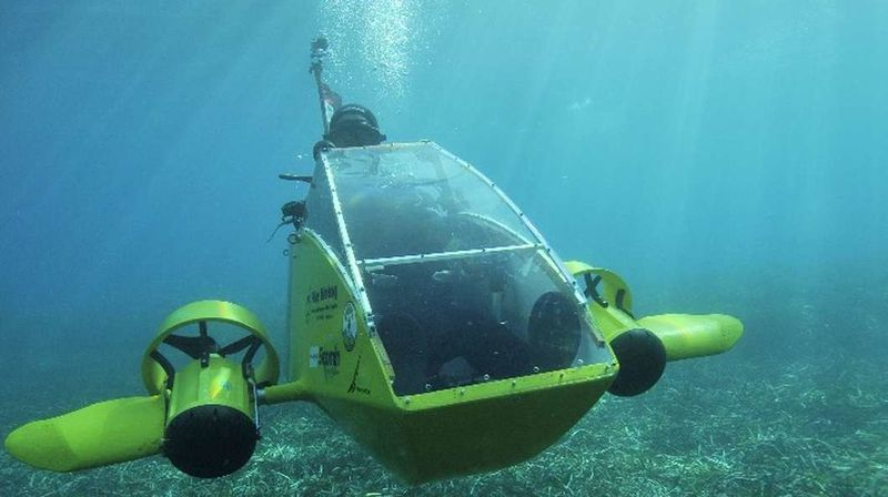 Personal Electric Submarines