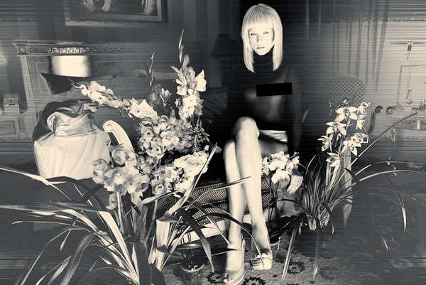 Vintage Flower-Centric Photography