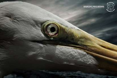 Tearful Animal Ads