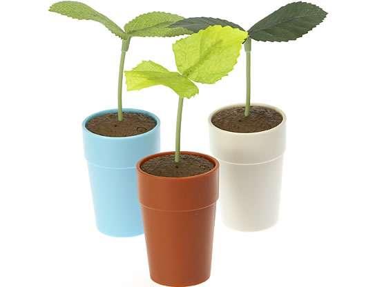 Problem-Solving Plants