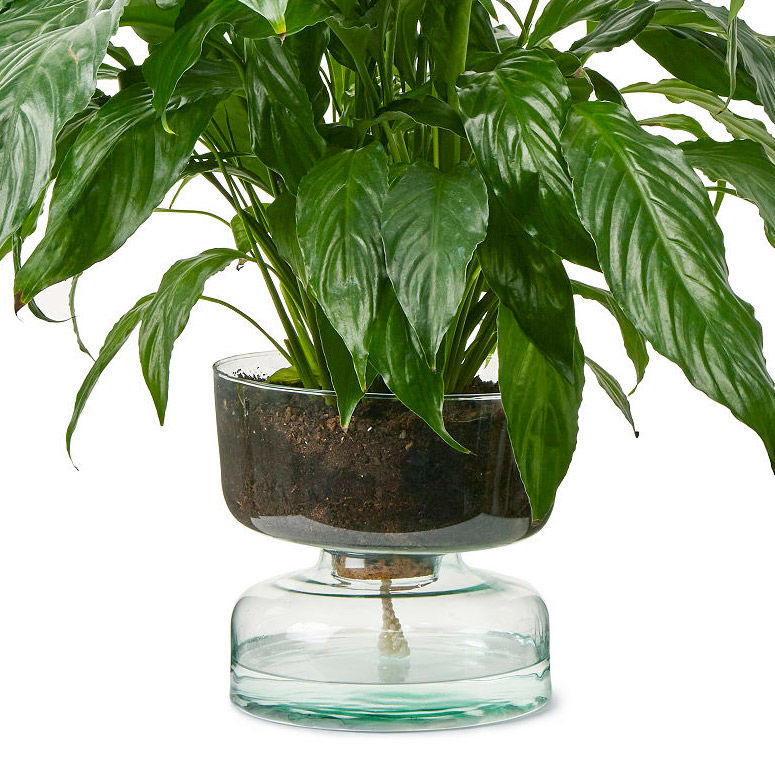 Modern Recycled Plant Holders