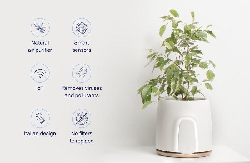 Sensor-Laden Air Purifiers