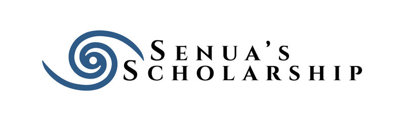 Video Game-Inspired Scholarships