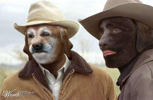Digitally Doggified