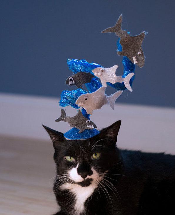 Feline Shark Meme Hats