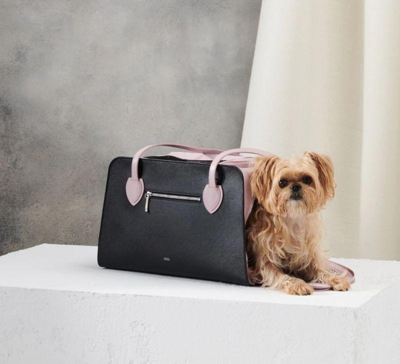 Pet-Friendly Luxury Accessories