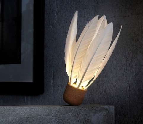 Feathered Light Fixtures