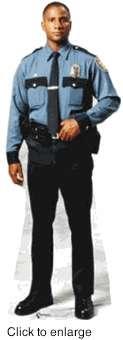 Fake Police
