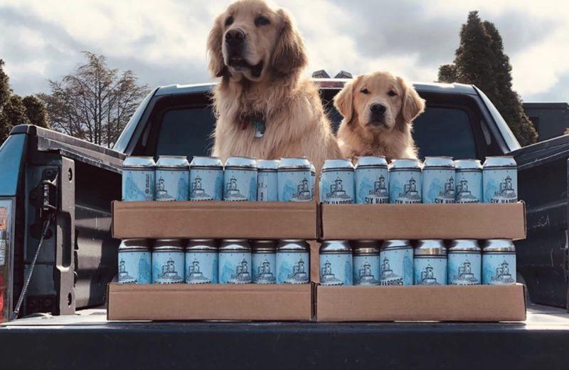 Beer-Delivering Dogs