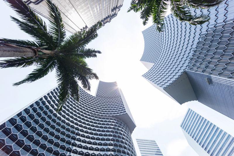 Tall Honeycomb Skyscrapers
