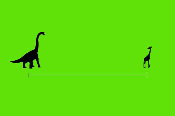 Down-Scaled Darwinist Ads