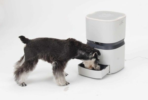 Connected Pet Feeders