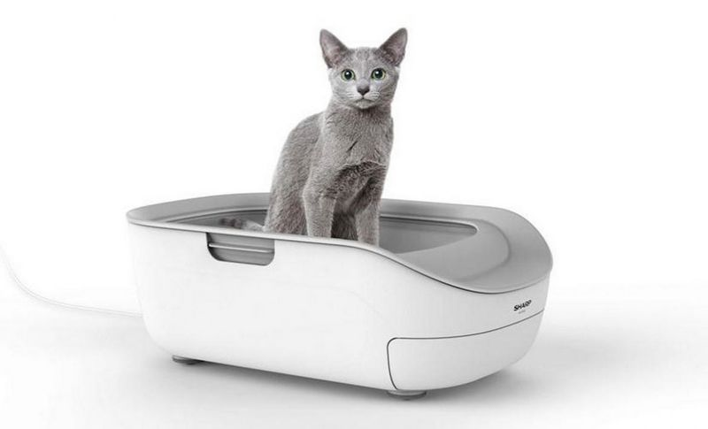 AI-Powered Litter Boxes