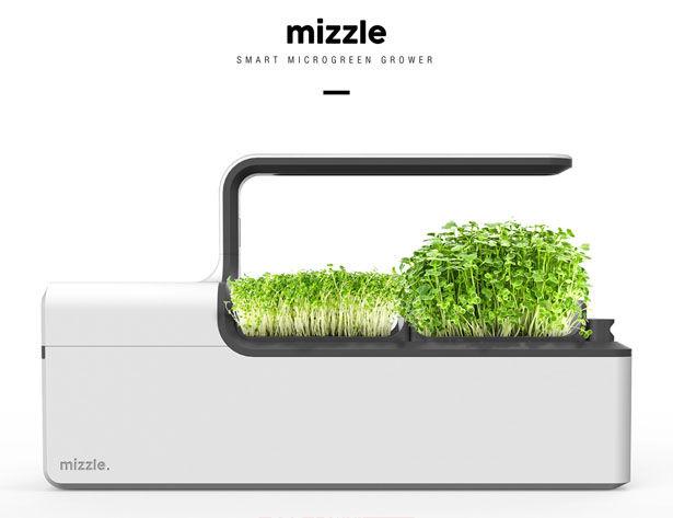 Optimized Nutrition Microgreen Gardens
