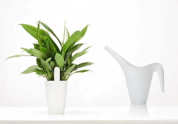 Discreet Plant Care Devices