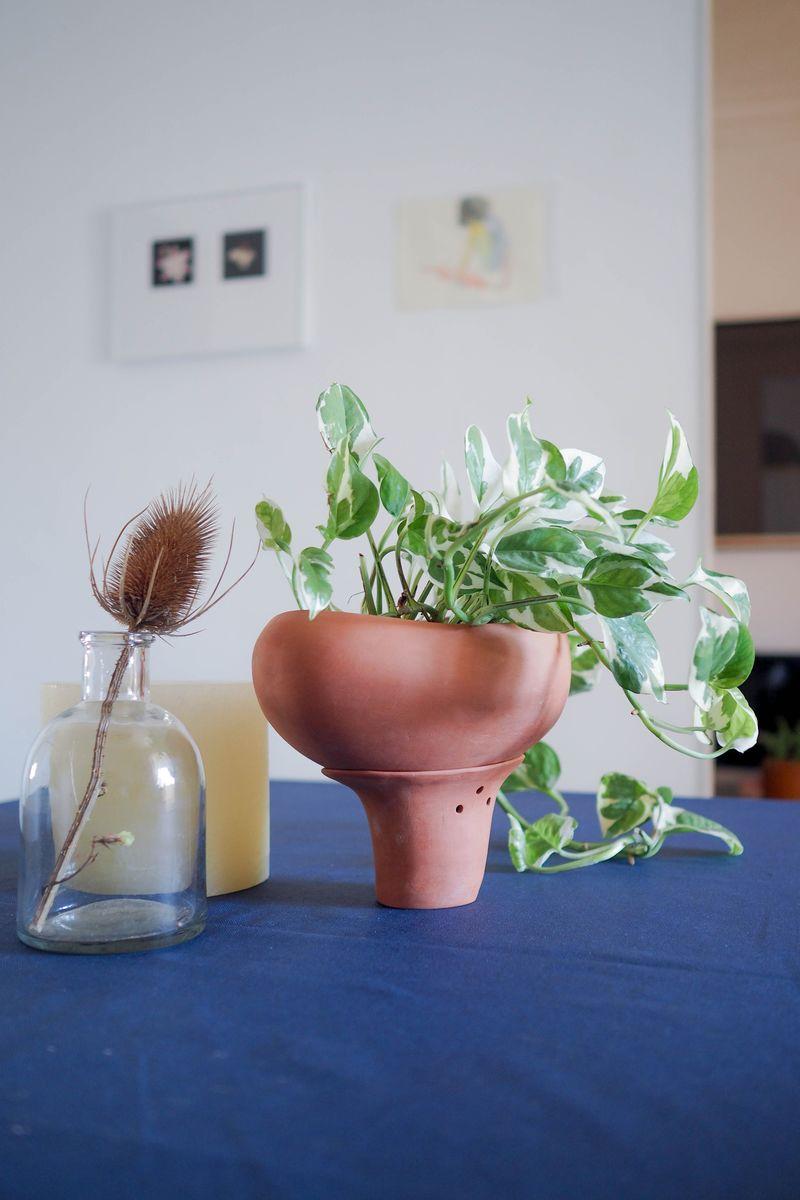 Minimalist Smart Plant Pots