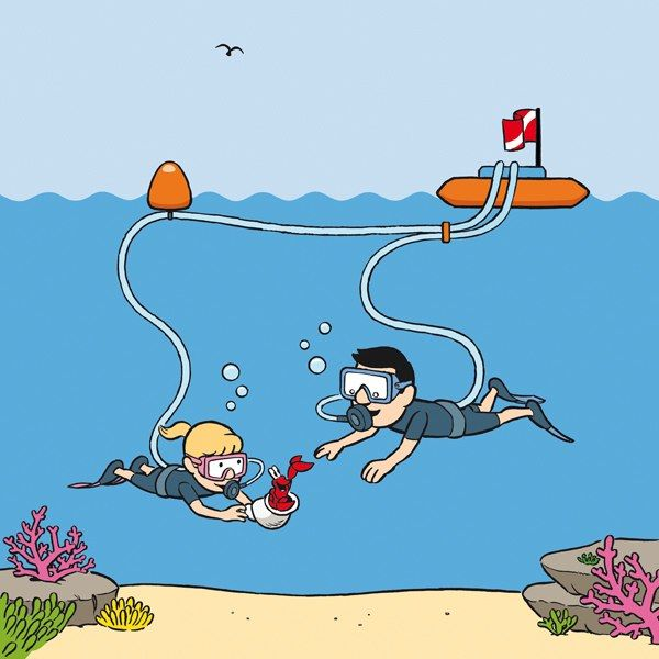 Safety Scuba Leashes