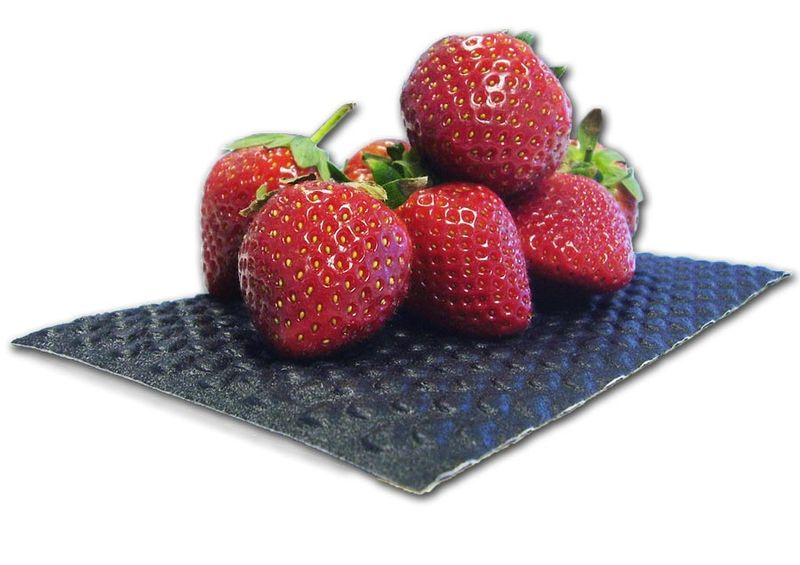 Padded Strawberry Packaging