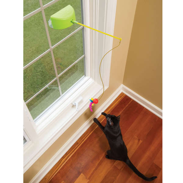 Eco-Friendly Feline Toys