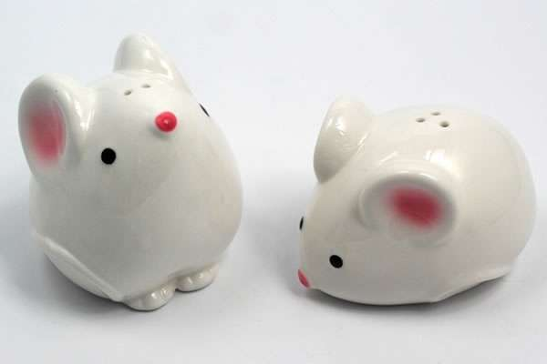 Miniature Rodent Spice Dispensers