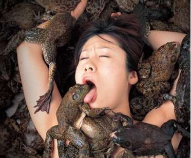 Sensual Frog Licking