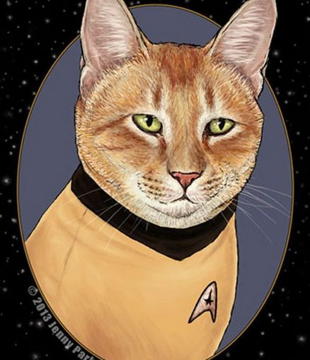 Sci Fi Feline Drawings Star Trek Cats