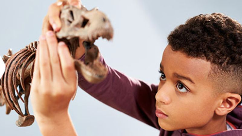 Subscription-Based STEM Toys