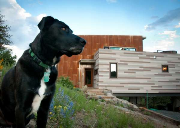 Repurposed Eco-Homes