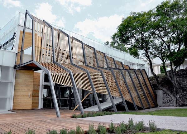 Risd Nature Museum
