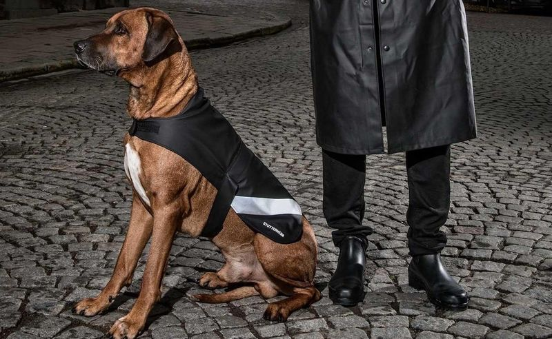 Inclement Weather Canine Clothing