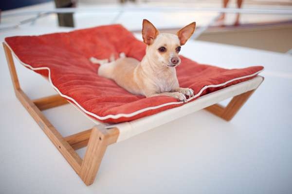 elevated furhaven shop deal alert hammock pet bed cot dog