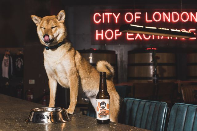 Canine-Friendly Craft Beers