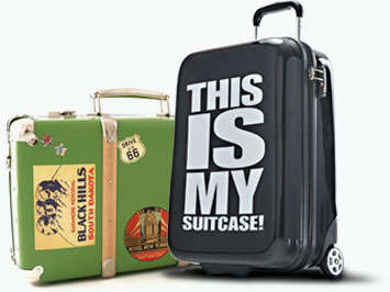 Eccentric Suitcase Sleeves