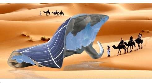 Icy Desert Oases