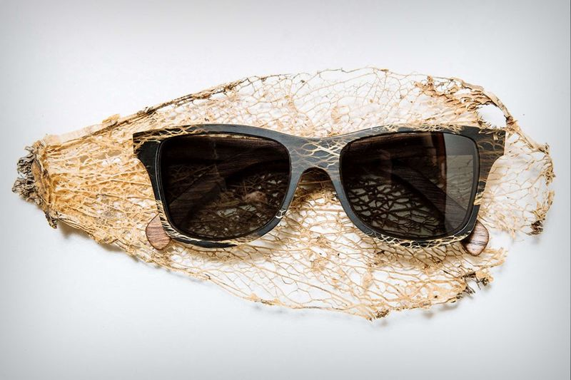 Dried Cactus Sunglasses