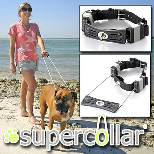 Always-On Dog Leashes