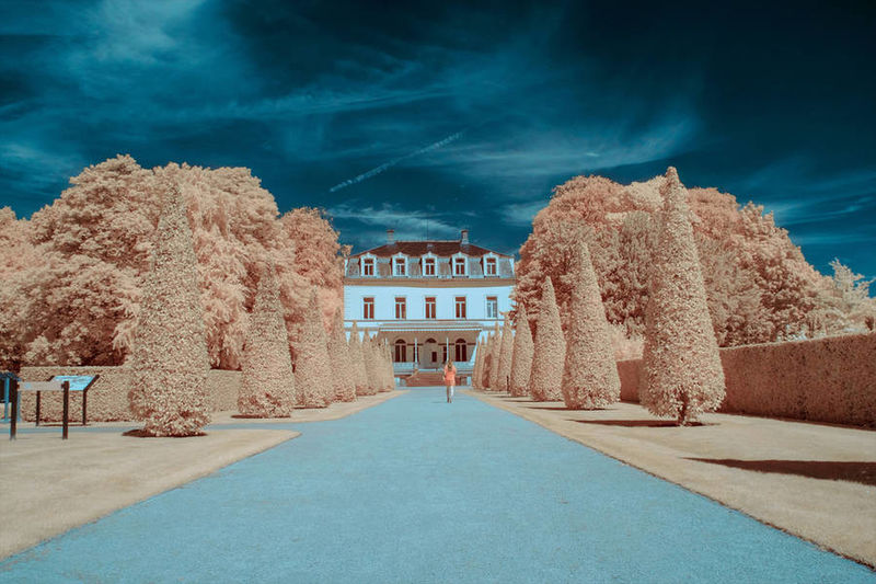 Artfully Infrared Landscapes