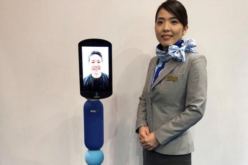 Surrogate Travel Robots