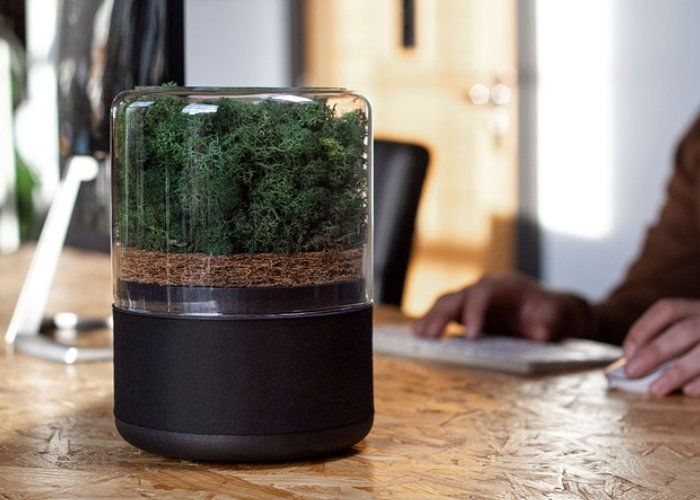 Naturally Powered Air Purifiers